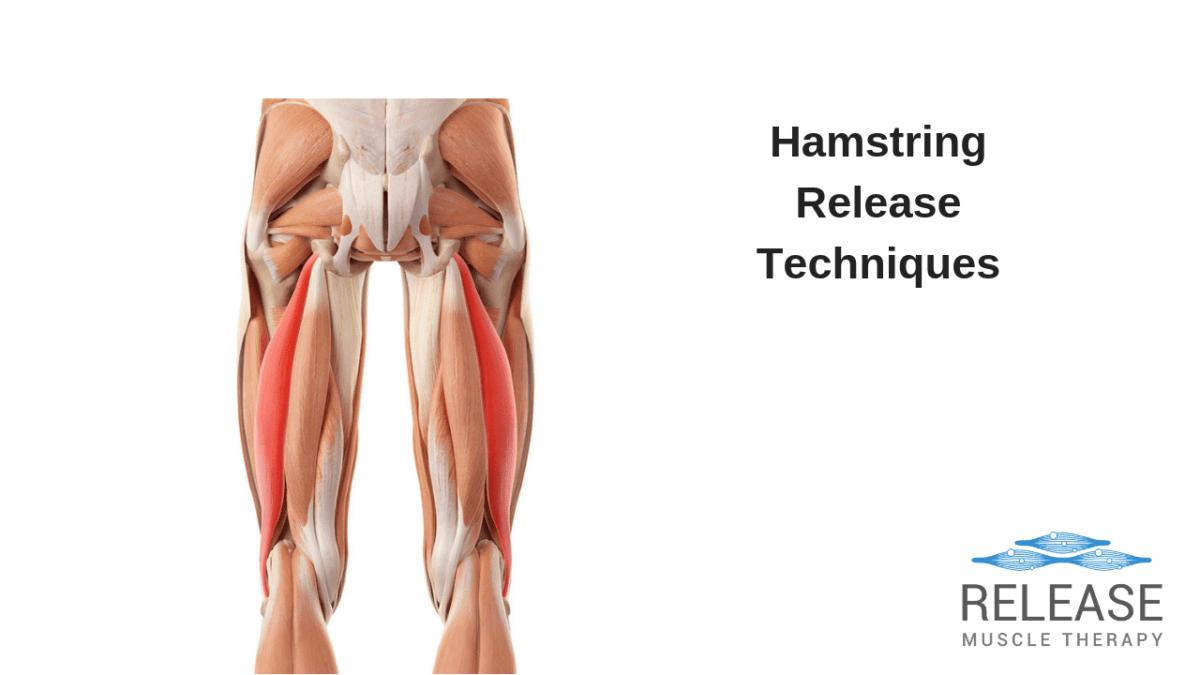 Hamstring Release Techniques - Santa Monica Massage